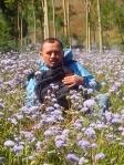 bunga ungu liar